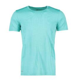ID Geyser seamless Performance T-shirt herre mint melange